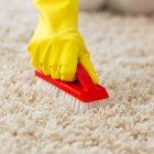 Myslíte si, že váš koberec už nic nezachrání? Omyl. Tento článek je krabička poslední záchrany
